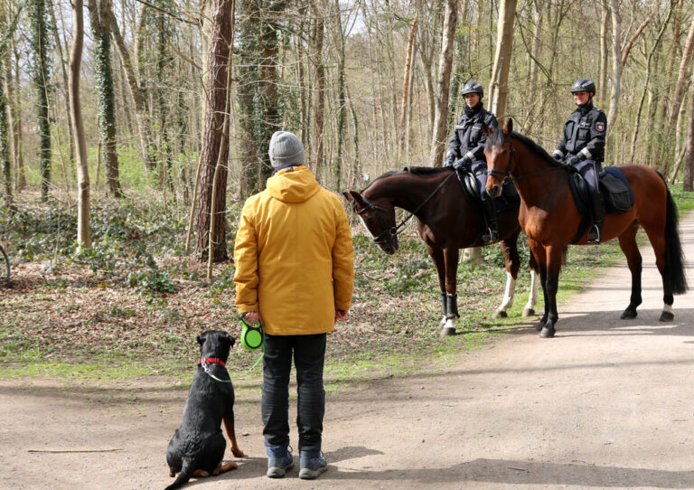 Zwei Reiterinnen im Gespräch mit einem Spaziergänger im Park